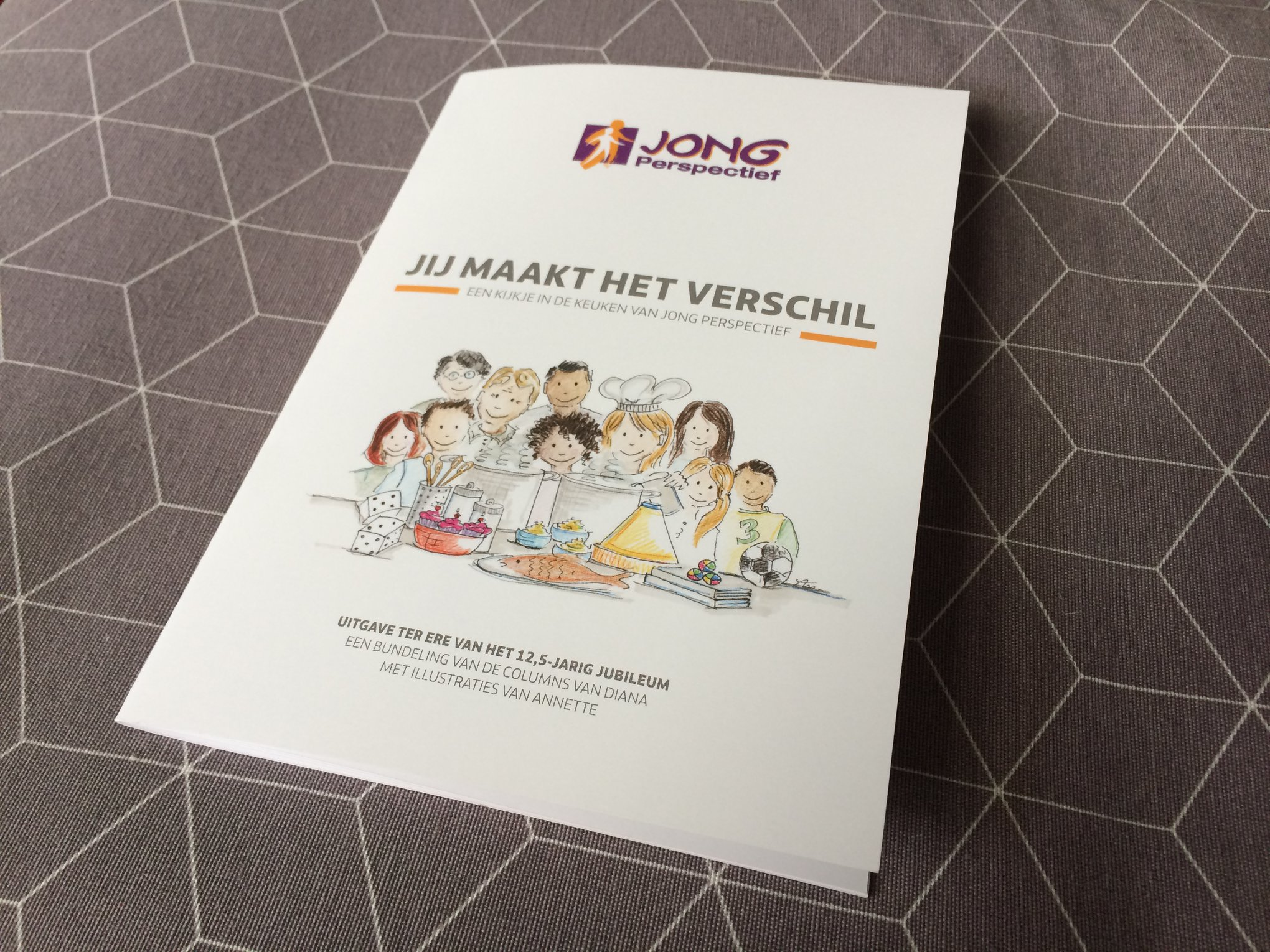 Boek over mentorproject